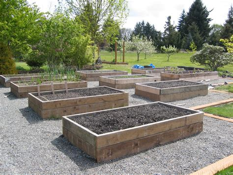 Raised Bed Garden Layout Design The Tacoma Kitchen Garden Journal Raised Vegetable Beds
