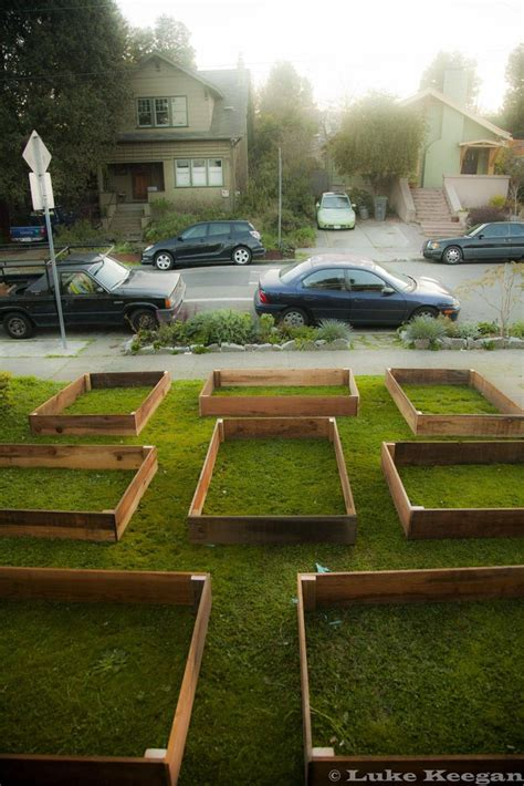 A Man Replaces His Lawn With A Giant Vegetable Garden And How To Keep Grass Out Of Vegetable Garden