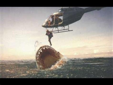 real megalodon!? worlds largest shark/animal ever!! youtube