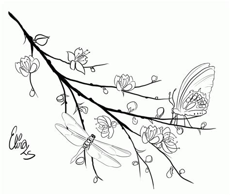 coloring page tree branch cherry blossom coloring pages coloring home