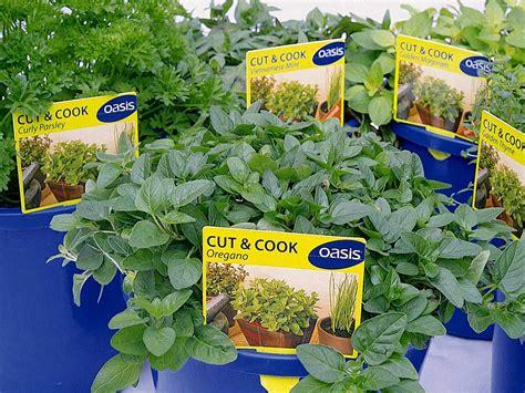 Gardeners Supply Wholesale by Tibballs Nursery Nursery Garden Supplies Wholesale