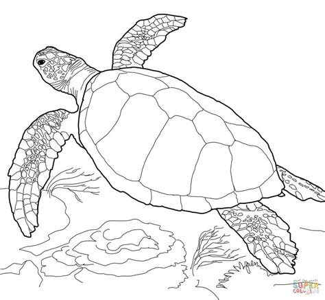 Sea Turtles Coloring Pages Tribal Sea Turtle Coloring Page Coloring Pages by Sea Turtles Coloring Pages