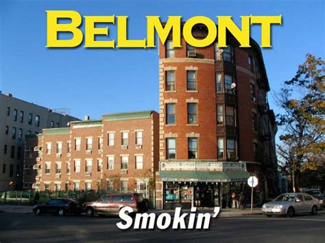 belmont section of the bronx belmont bronx