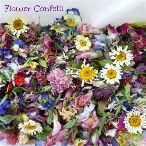 Wedding Aisle Flower Petals by Flower Petal Confetti Dried Flowers Wedding Decorations