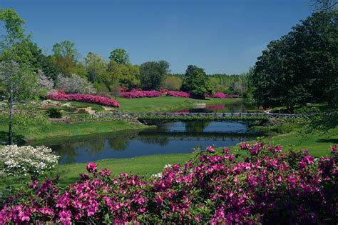 bellingrath gardens alabama birding trails