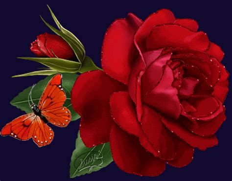 imagenes d rosas en movimiento im 225 genes de rosas con movimiento para mi novia