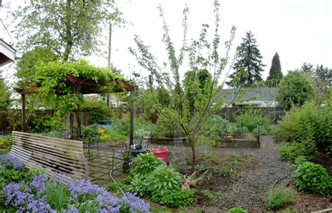 Small Backyard Orchard by Beautiful Home Orchard Design Ideas Interior Design Ideas Gapyearworldwide