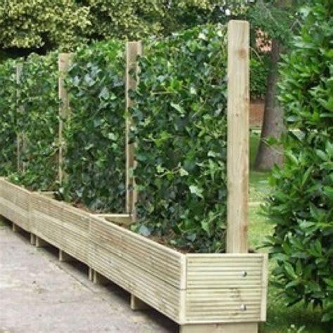 living screens wooden fences pinterest