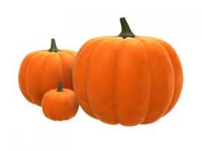 significance of pumpkin in pumpkins
