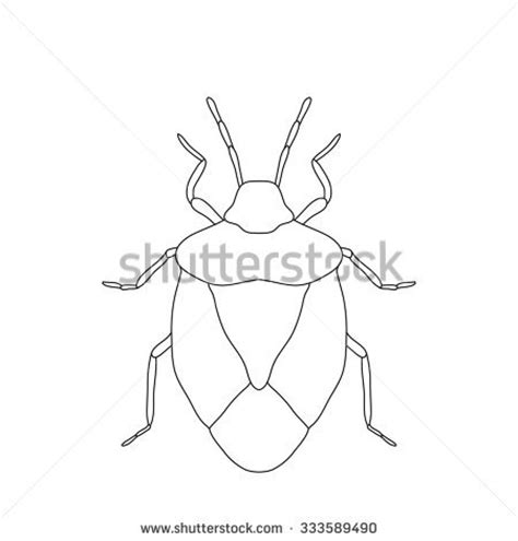 stink bug coloring page free online sketch coloring page