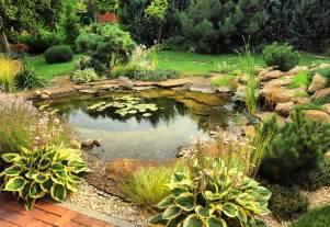 Backyard Ponds Waterfalls Pictures Natural Backyard Ponds Nualgi Ponds
