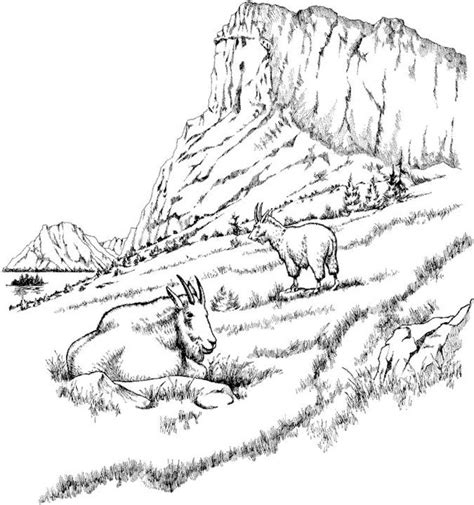 landscape coloring pages landscape coloring page