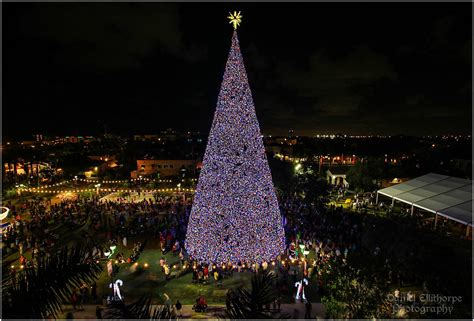 delray beach boat parade 2017 top palm beach holiday photo spots married in palm beach
