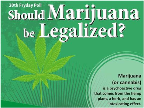 Why Marijuana Should Be Illegal Essay by Start Early And Write Several Drafts About Essay On Why Should Be Legalized