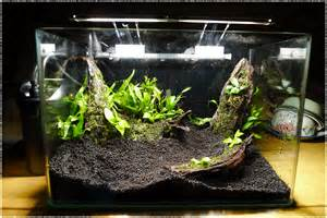 Small Tank Aquascaping by Aquascape 167 R Lli4rt12 S R3posit0ry