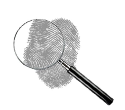 How To Check Your Own Criminal Background How To Check Your Criminal Record And Do A Background