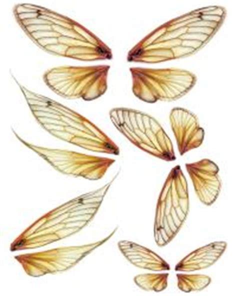 tutorial ali ooak ooak artist emporium fairy wing prints gt oo