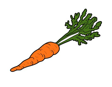 imagenes infantiles de zanahorias dibujo de zanahoria ecol 243 gica pintado por lamar en dibujos