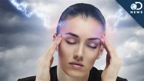 do dogs get headaches why do we get headaches doovi