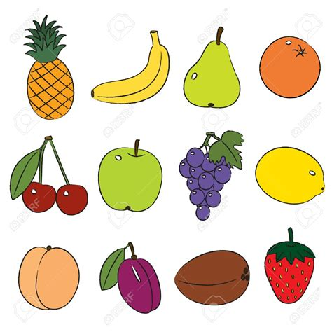 clipart of clipart of fruit many interesting cliparts