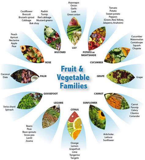 6 fruit families fruit vegetable families health fitness