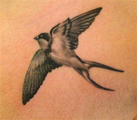 black and white swallow tattoo designs this artistic black and white is posed as