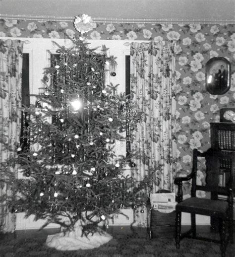 vintage photo 1940s christmas tree wild flowered wallpaper