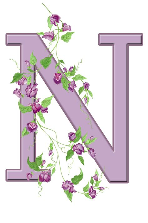 letter n floral initial free stock photo domain
