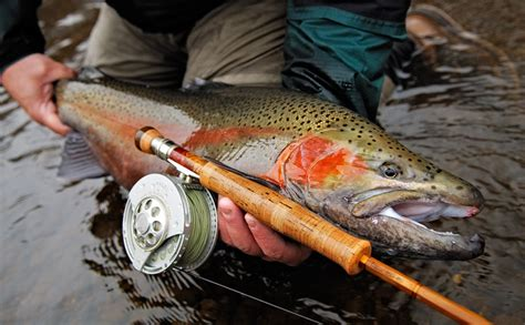 rod and reel head boat fly fishing essentials equipment gear guide mountain