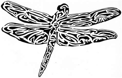 dragon fly drawings cliparts co