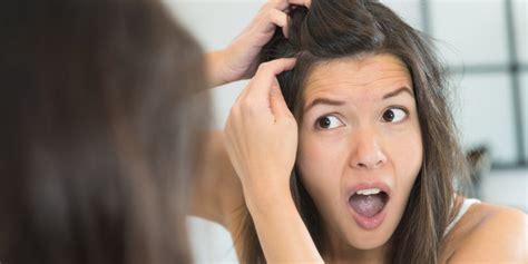 Minyak Kemiri Hilangkan Uban rambut kamu beruban cara menghilangkan uban ini sangat