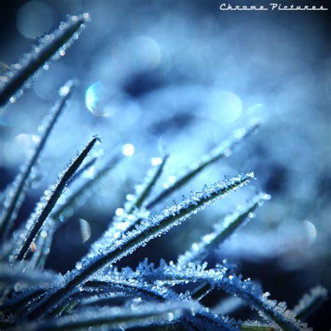 frozen wallpaper for chrome frozen destiny by aljoschathielen on deviantart