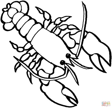 Outline For Dylans Crawfish Toy Homemade Toys Crayfish Coloring Page