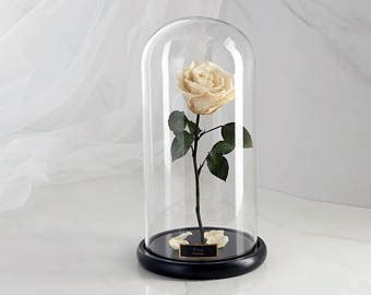forever in glass dome and the beast large enchanted in
