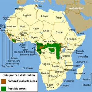 Modern Map Of Africa by Chimpanzees Habitat Facts Images Amp Pictures Becuo