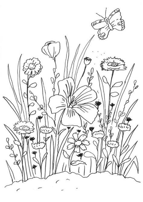 dibujo de mariposa en flores para colorear flores y mariposa dibujo para colorear e imprimir