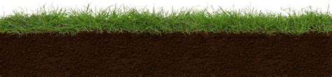 grass section index of custom globalprobetechnologies images