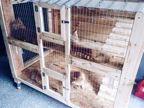 Kandang Kucing Well Cage wooden pallet cat house design