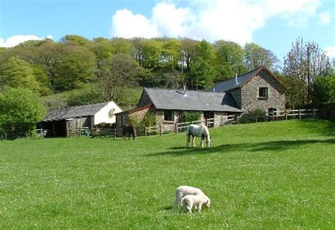 riscombe farm cottages minehead