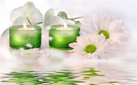 spa images hd spa flower wellness pastel miscellaneous opus full hd