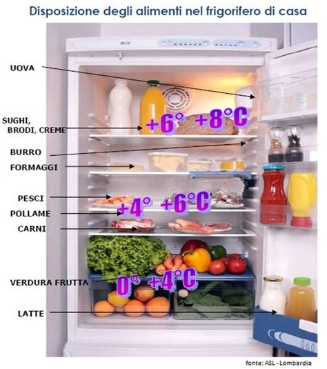 conservazione degli alimenti in frigo per una buona conservazione degli alimenti in frigo