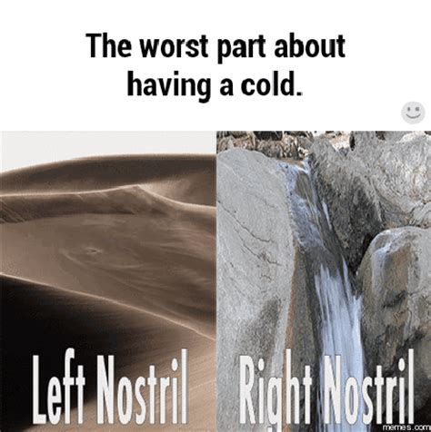 Have A Cold Meme - worst part about having a cold memes com