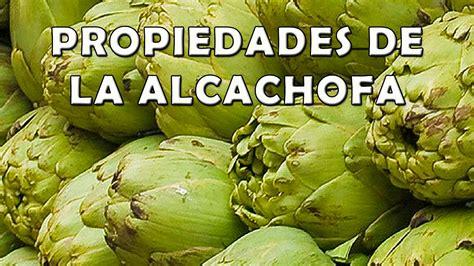 fuente de la alcachofa madridvillaycorte es para que sirve la alcachofa propiedades beneficios contraindicaciones de la alcachofa