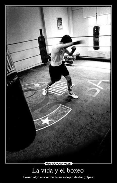 imagenes motivacionales de boxeo im 225 genes y carteles de boxeo pag 10 desmotivaciones