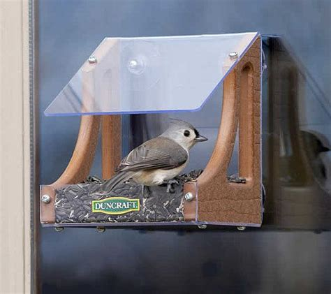 bird house attached to window bird house attached to window 28 images 25 best ideas
