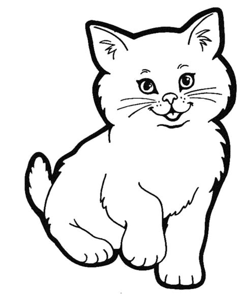 how to draw a cute realistic cat cartoon face step by step