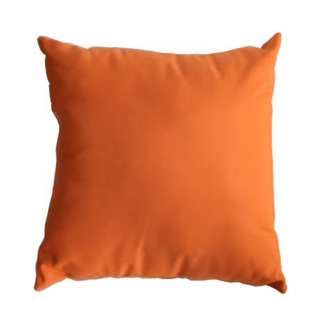 sunbrella indoor outdoor throw pillow