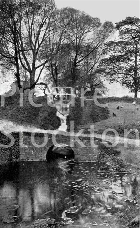 Leisure, Countryside Parks and Views   Picture Stockton
