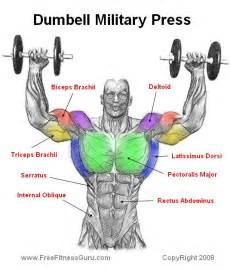 difference between barbell and dumbbell bench press dumbell press the soul s temple