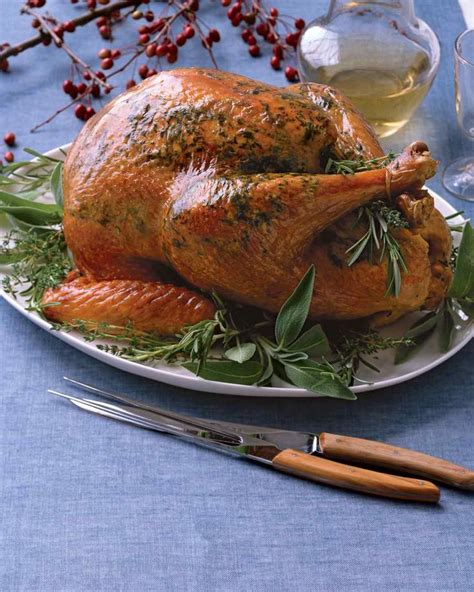 the best oven roasted turkey recipe 17 best ideas about electric turkey roaster on